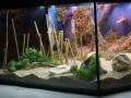Workhop 1: 3D-Rückwand (Frank Korjakin)