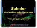 Vortrag über Salmler