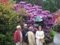 Vereinsausflug Insel Mainau