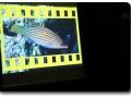 Rudi Nischl - Film und Foto