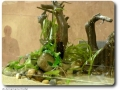 Aquascaping mit Swantje Thalmann