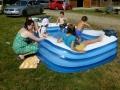 """Junge \""""Scalare\"""" im Pool"""
