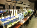 Aqua-Day 2016: Börse
