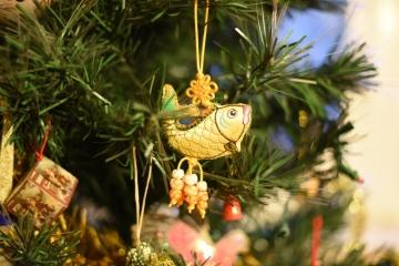 Aquaristische Weihnachten