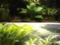 LED-Umbau: Vergleich 1