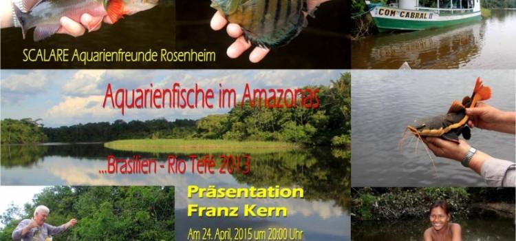 Aquarienfische im Amazonas – Franz Kern