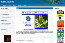 Vereinswebseite im neuen Design